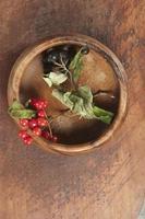 schwarze Apfelbeere und Pfeilholz foto