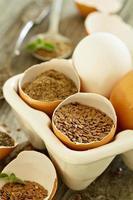 natürliche Eiersatzprodukte foto