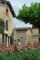 Perouges Frankreich und Tulpen foto