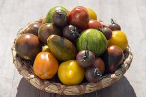 Vielzahl von Tomaten in einem Korb foto