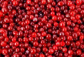 Cranberry foto