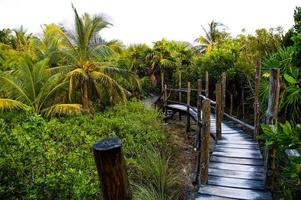 Resort foto