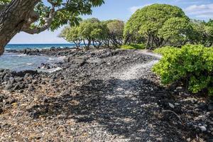 Küstenweg foto