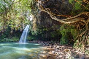 Twin Falls Wildnis foto