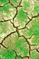 trockene rissige Erde