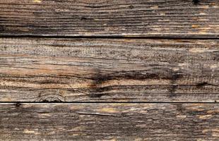 Textur Holz foto