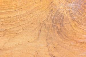 Holzbeschaffenheit