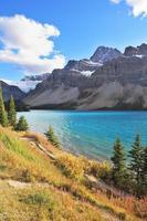 Berge und Kiefern am Gebirgsfluss Banff foto