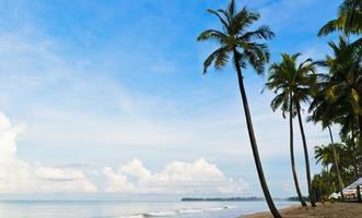 perfekter tropischer Inselparadiesstrand foto