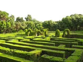 englisches Labyrinth foto