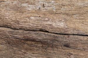 Holzbeschaffenheit. foto