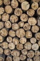 Feuerholz, Holz, Knüppel