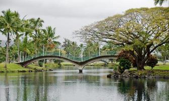 Hilo Kalakaua Park
