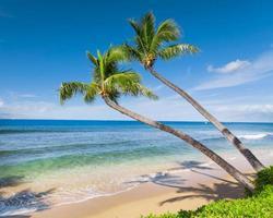 tropischer Strand foto