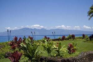 sonniges Maui foto