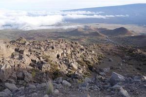 Mauna Kea foto