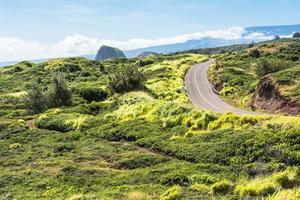 die Straße im Grünen, Maui foto