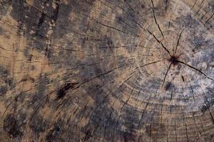 Grunge Holz Textur