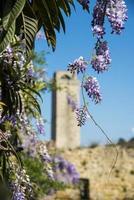 San Gimignano. la toscana. Italien. Europa. foto