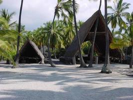 hawaiianische strohgedeckte Hütten, Zuflucht foto