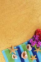 Hawaii Sommer Strand Hintergrund vertikal foto