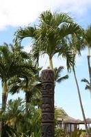Tiki-Totem in Palmen foto