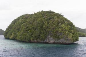 blaues Meer und grüne kleine Insel foto