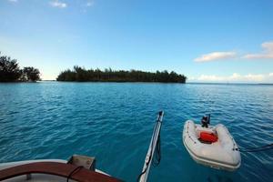 zart auf Lagune foto