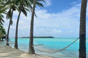 Hängematte auf tropischer Insel foto