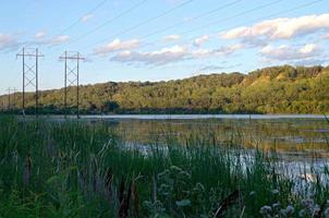 Lilydale Park und Pickerel See