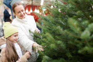 Familie, die Weihnachtsbaum am Markt wählt foto