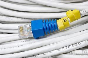 LAN-Kabel foto