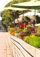 Sommerblumen in der Nähe des Straßencafés der Stadt