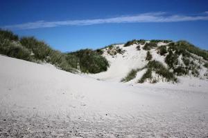 Blick über Sanddünenstrand unter blauem Himmel