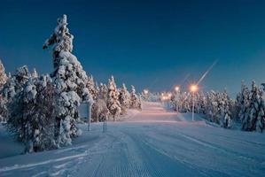 beleuchtete Straße im Wald
