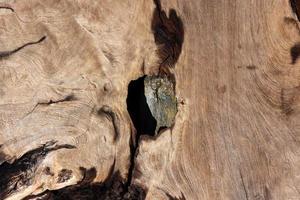 Holz Textur Hintergrund, Teakholz. foto