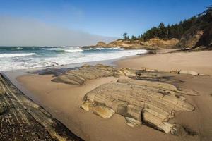 Oregon Coast Porträt