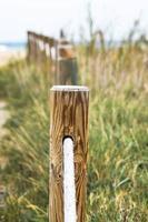 Holzpfosten und Seil foto