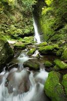 Wasserfall und frisches Grün foto