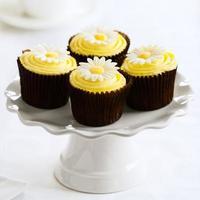 Gänseblümchen Cupcakes foto