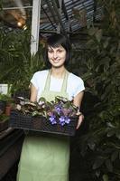weibliche Botanikerin, die Kiste voller Blumenpflanzen trägt foto