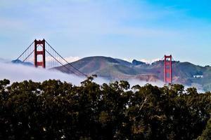 goldenes Tor über dem Nebel