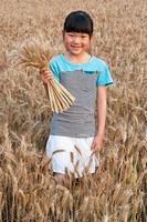 das kleine Mädchen auf dem Weizenfeld foto