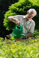 älterer Mann, der Pflanzen gießt foto