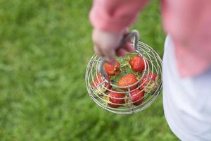kleines Mädchen, das Erdbeeren in einem Korb trägt foto