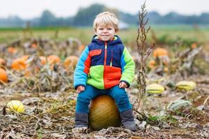 Kleinkindjunge, der Spaß hat, auf großem Halloween-Kürbis zu sitzen