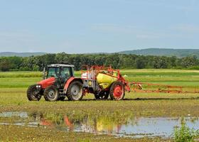 Bauer düngt das Feld mit Traktor foto