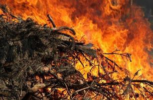 großes Feuer foto