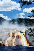 Vertikal-Feuerloch-Geysir, der in einen Fluss in Yellowstone läuft.