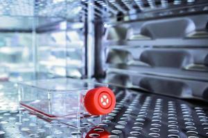 Kulturflasche für wissenschaftliche Forschung foto